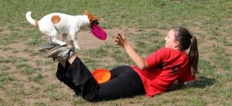 frisbees trükk