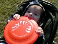 Harapásálló frisbee